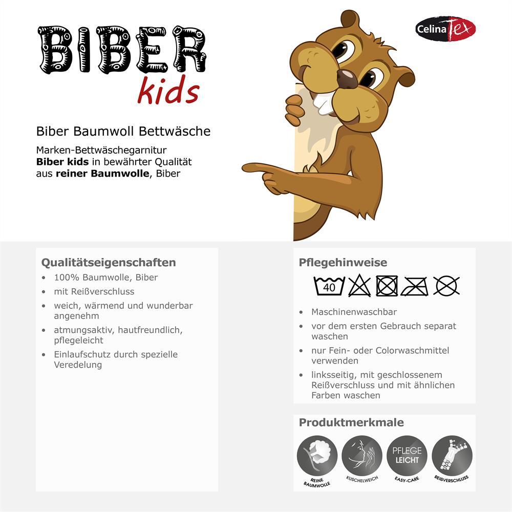 Kinder Bettwäsche Baumwolle Biber Kids 135x200 Prinzessin Frosch