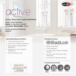 active_laken_pk.jpg