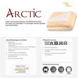 arctic_05.jpg