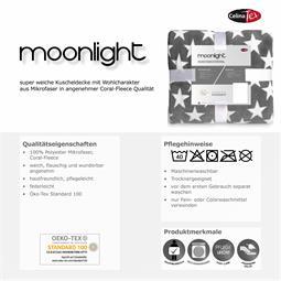 moonlight_05.jpg