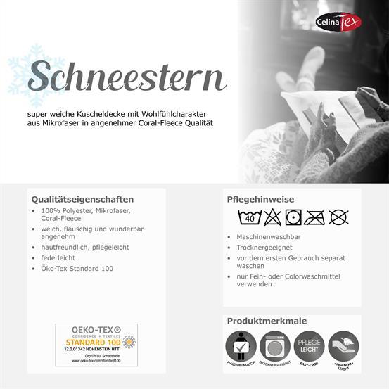 schneestern_05.jpg